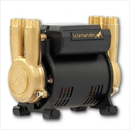 Salamander Pumps - 1.5 Bar Twin Brass Ended Shower Pump Pos Head Regenerative